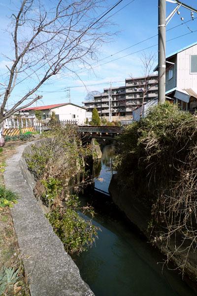 5.蛇行する奈良川.jpg